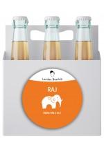 Пиво Raj индийский пэйл эль, нефильтрованное в упаковке 12шт × 0.5л.