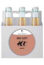 Пиво Bro Gott медовый эль, нефильтрованное в упаковке 12шт × 0.5л.