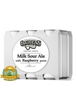 Пиво Milk Sour Ale With Raspberry Puree, светлое, нефильтрованное в упаковке 20шт × 0.5л.