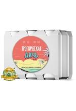 Пиво Тропическая дичь v 2.0, светлое, нефильтрованное в упаковке 20шт × 0.5л.